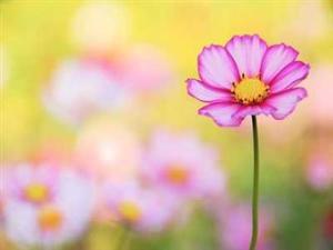 image by beliefnet.com