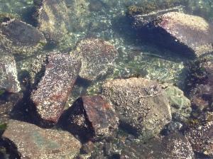 Softening Stone