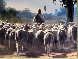The Sovereign Shepherd