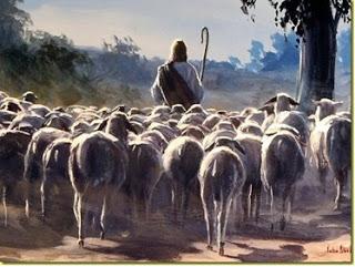 The Sovereign Shepherd