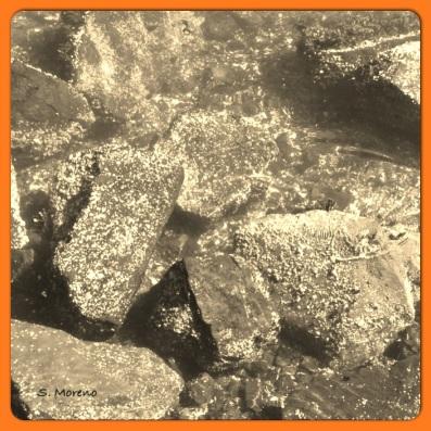 Settling Stones