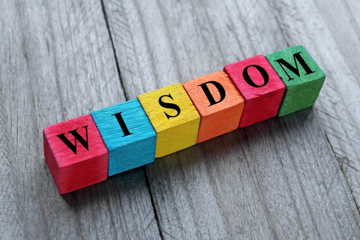 The Wisdom We Seek