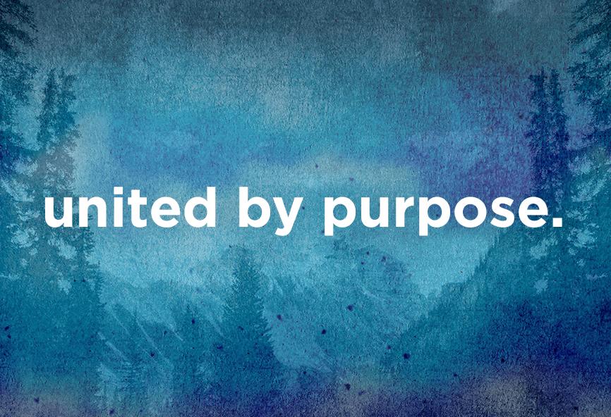 United Purposeful Paths