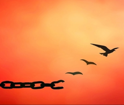 The Favor of Forgiveness