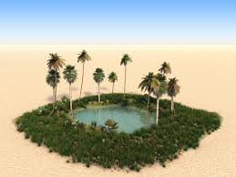 Our Oasis